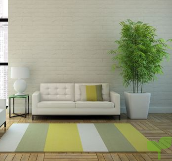 decorar con una planta grande 1 - Ideas para decorar con plantas