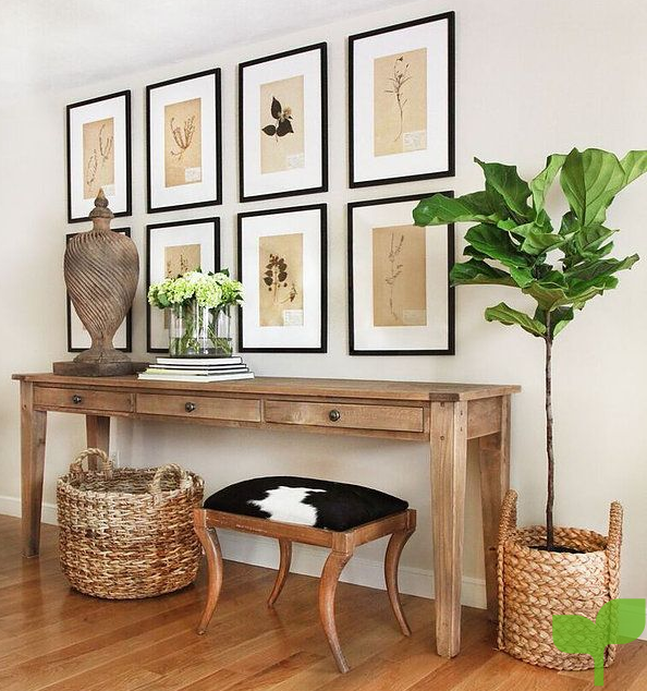 decorar un recibidor con plantas - Ideas para decorar un recibidor