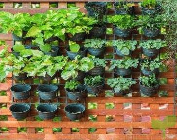 jardines verticales - Ideas para decorar con plantas