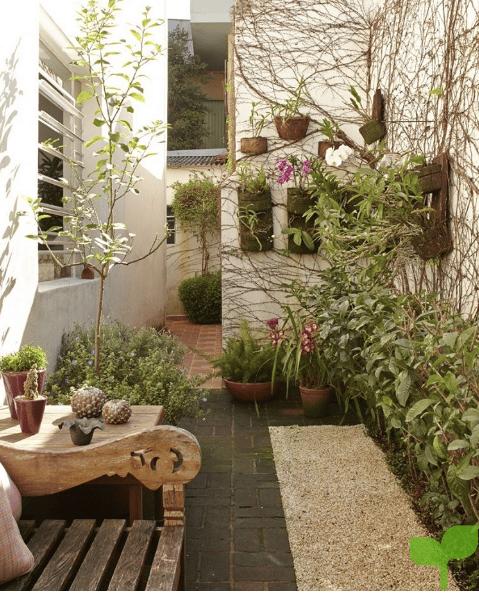 pasillos con plantas - Ideas para decorar pasillos
